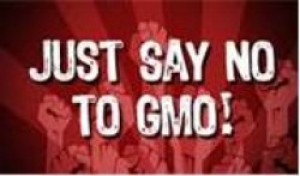 """Just Say NO GMO's For Me Please!!!"" 