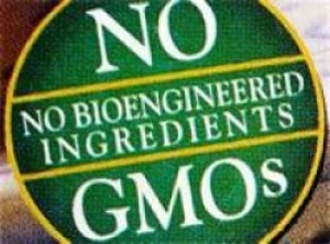 """GMO & What You Need to Know"""