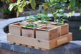 eco friendly planter trays
