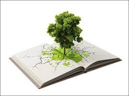 greening our schools