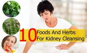 kidney herbal remedies