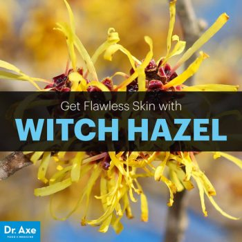 witchhazelarticlememe
