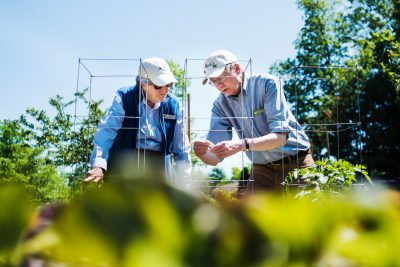 living organically in your retirement years