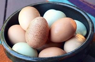 eggs-1482971_960_720