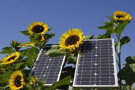 """8 Benefits Of Solar Energy"""