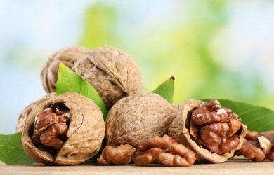 walnuts-for-health