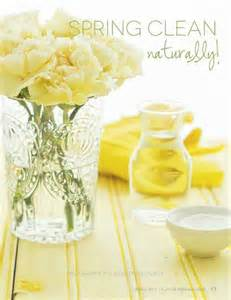 spring cleaning naturally with 9 ingredients