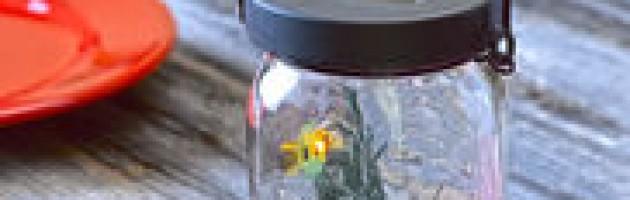 firefly jar solar