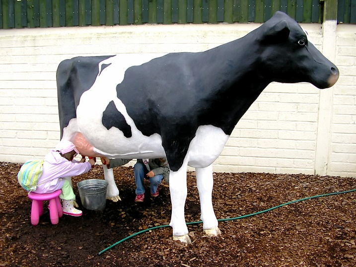 """Cow for Organic Milk"""
