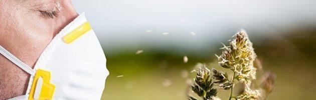 Treating allergies natural way