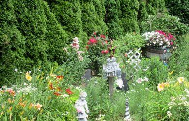 my environmentally friendly garden