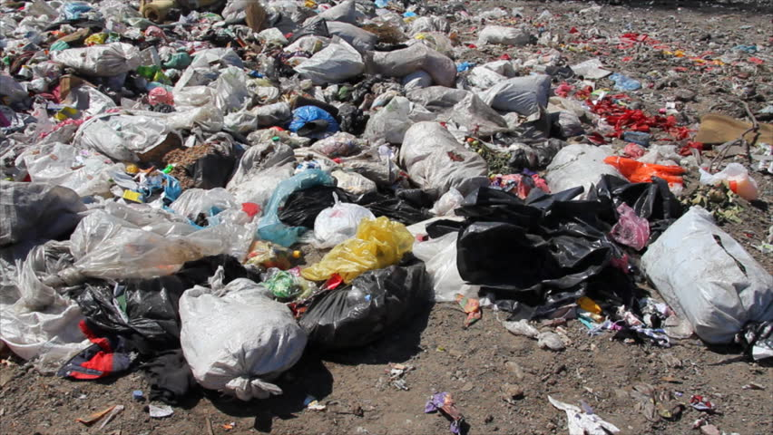 Polllution and Solutions: Plastic Bags Harmful Effects