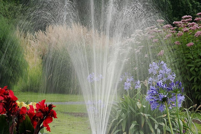 How To Reduce Water Use In The Garden