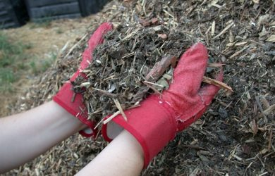 Mulch_shredded_yard_waste 2