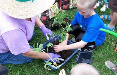 little boy gardening 3771779845_61c2e5d871_b (1)