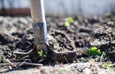 soil and shovel pexels-photo-296230