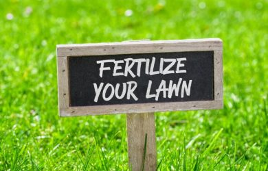 fertlize yur lawn