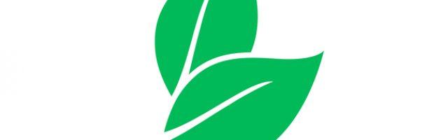eco-friendly purchasing