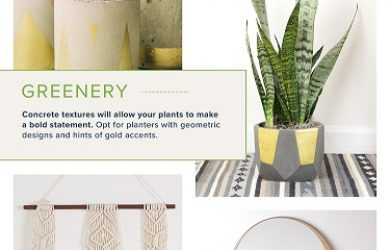 DIY plant stand infographic