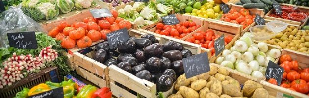 organic foods and healthy eating